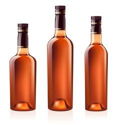 cognac brandy vector image vector image