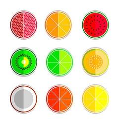 orange mandarin lemon watermelon cantaloupe kiwi vector image