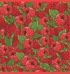 vintage raspberries seamless pattern vector image