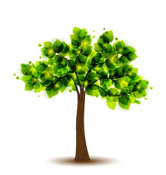 tree vector image