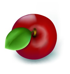 Fresh red apple vector