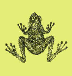 Frog abstract artistic lines vector image