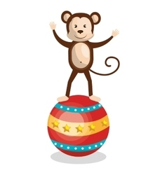 monkey circus animal show isolated icon vector image