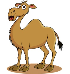 Camel cartoon vector