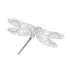 Zentangle style of dragonfly vector