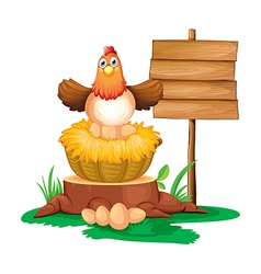 A hen hatching eggs with a wooden signboard vector image