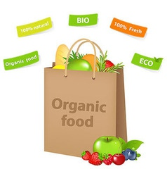 Bag with organic food vector