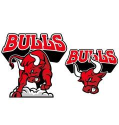 bull mascot vector image vector image