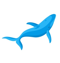 flat style of whale vector image vector image