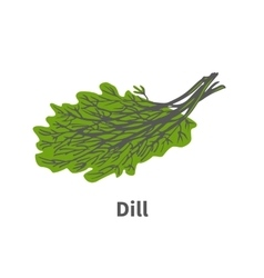 Hand-drawn plant tip of ripe green dill vector