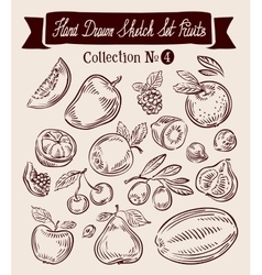 Hand drawn sketch set fruit vector image