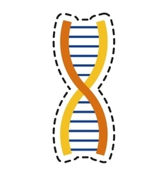 Isolated dna design vector