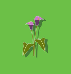 Paper sticker on background of flower calla vector