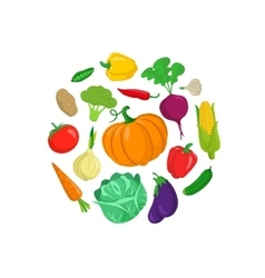 Vegetables round composition vector