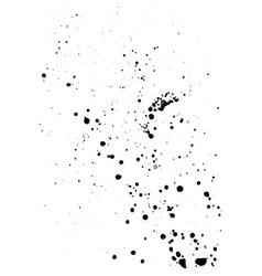 Ink paint splatter texture vector