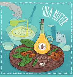 Shea butter oil used for cooking vector