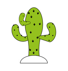 Sketch color silhouette cactus desert plant with vector