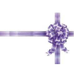 Purple ribbon vector