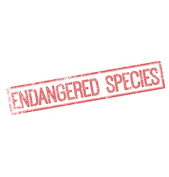 Endangered species red rubber stamp on white vector