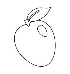 apple ripe fruit icon thin line vector image