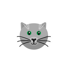 Isolated cat flat icon kitty element can vector