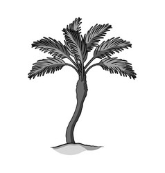 palm beach treesummer rest single icon in vector image vector image