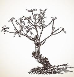 Small tree vector