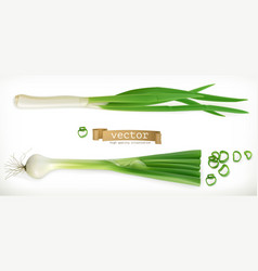 Green onion vegetable 3d icon vector