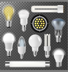 incandescent lamps light bulbs fluorescent energy vector image vector image