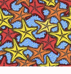 pattern with starfish vector image