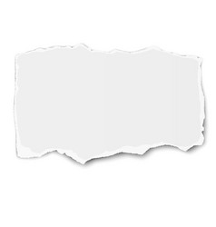 White paper tear with shadow placed on white vector