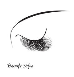 Closed eye with long eyelashes vector image