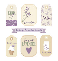 Set of vintage labels and tags with lavender vector