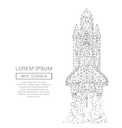 space shuttle low poly gray vector image vector image