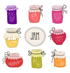 The set of hand drawn jars with home-made jams vector image