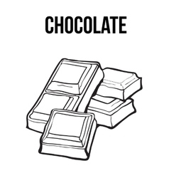 Pieces of black and white chocolate bar isolated vector image