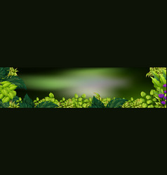 Background scene with green leaves vector