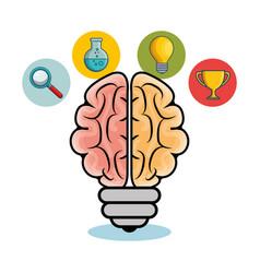 Brain and light bulb design vector