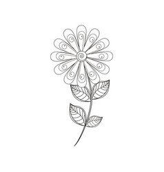 daisy flower decoration line vector image