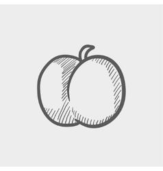 Fruit sketch icon vector