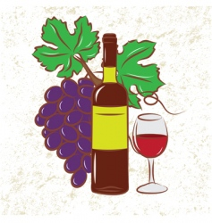 vine and grapes colored vector image