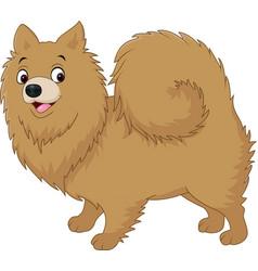 cartoon dog pomeranian husky vector image vector image