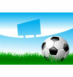 soccer ball on grass field vector image vector image