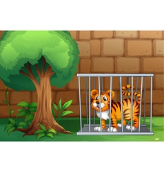 A tiger inside a steel cage vector