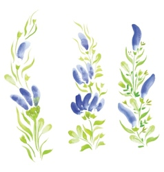 Watercolor flowers in different styles vector