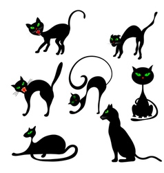 Cats in different poses set vector