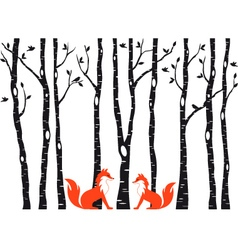 Cute foxes with birch trees vector image vector image