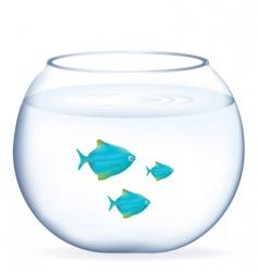 fishes in aquarium vector image vector image