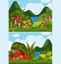 two river scenes with mushrooms in garden vector image