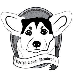 Welsh corgi pembroke portrait isolated dog vector